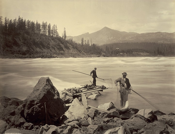 Frank Jay Haynes ,   Cascades of Columbia  ,  1880     Vintage albumen print from a mammoth-plate glass negative ,  16 5/8 x 21 3/4 in. (42.2 x 55.2 cm)     2185     Sold